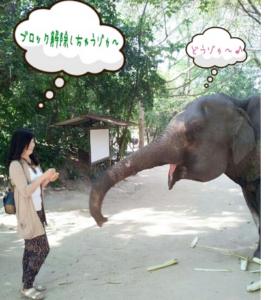 彩とう美恵さんプロフィール写真